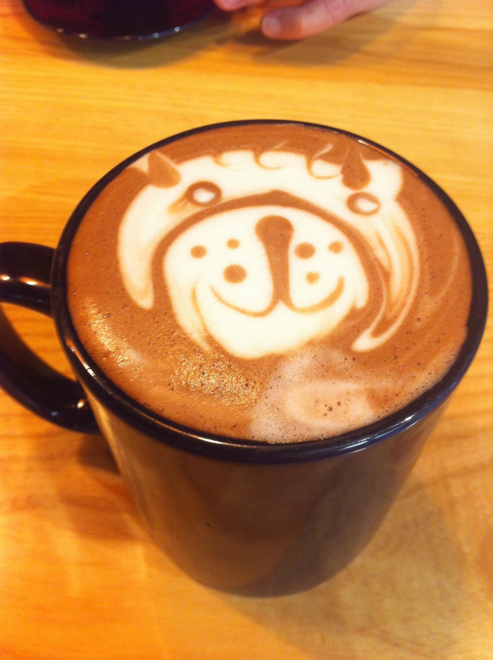 My early morning best friends, Patrick, Brian and Dave, the amazing barista's at my local coffee spot, serve me up an early morning   'Lioness Hot Chocolate'  . Their artistry and ever cheerful mood always gets my day started on just the right note. Purrrrr!