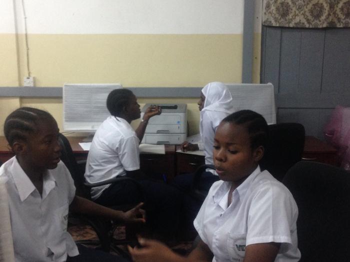 Fellows working in teams.jpg