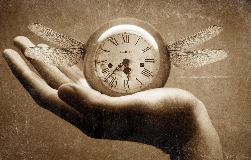 Time_Flies.jpg
