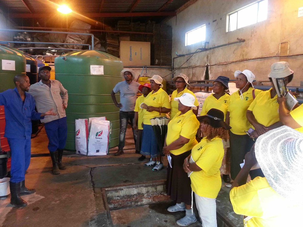WOMAN FARMER FOUNDATION COMPETITION BENEFICIARIES AT QUTOM FARMS SOUTH AFRICA ON AN EXPOSURE VISIT.jpg