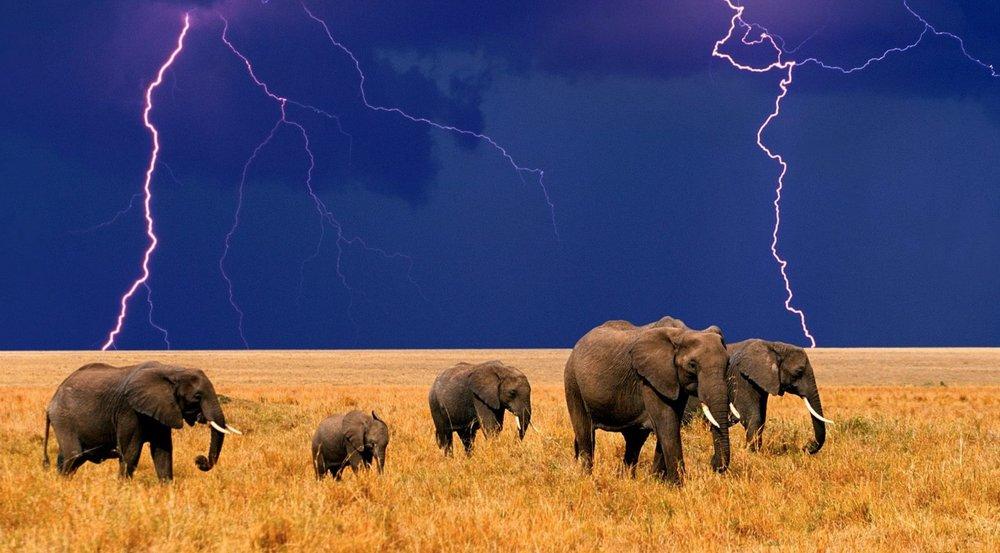 African_Rain_Storm.jpg