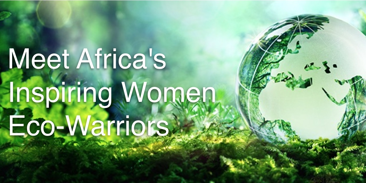 Introducing Africas Innovative Women Eco Preneurs Turning It Comes To Sustainable Product Design If Has A Circuit Board Environmental Challenges Into Businesses Lionesses Of Africa Website