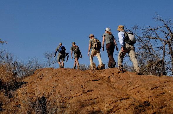 hikers-safari.jpg