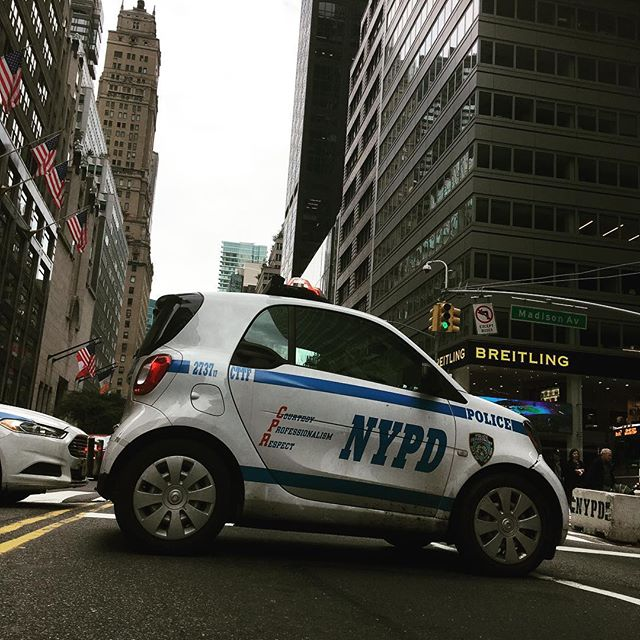 Small police in a Big Apple