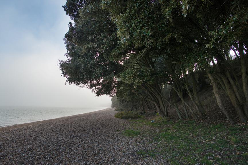 calshot_beach.jpg