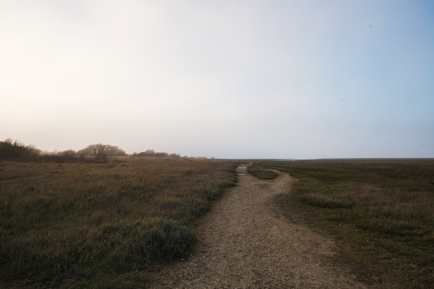 coastal_walk.jpg
