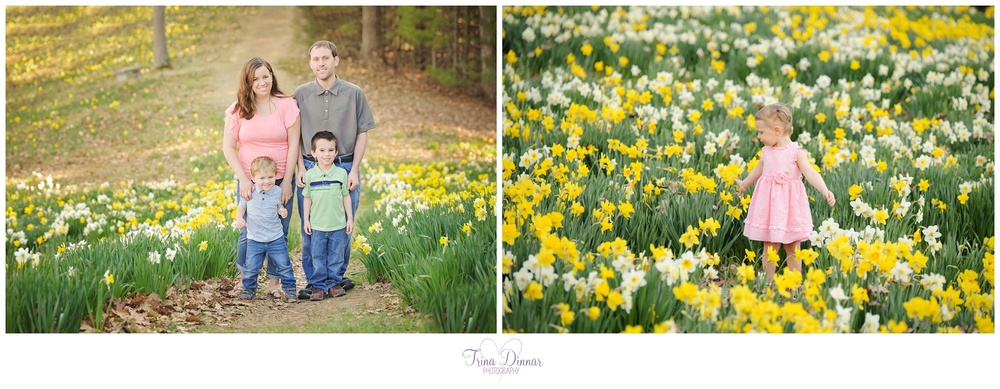 daffodil portrait sessions