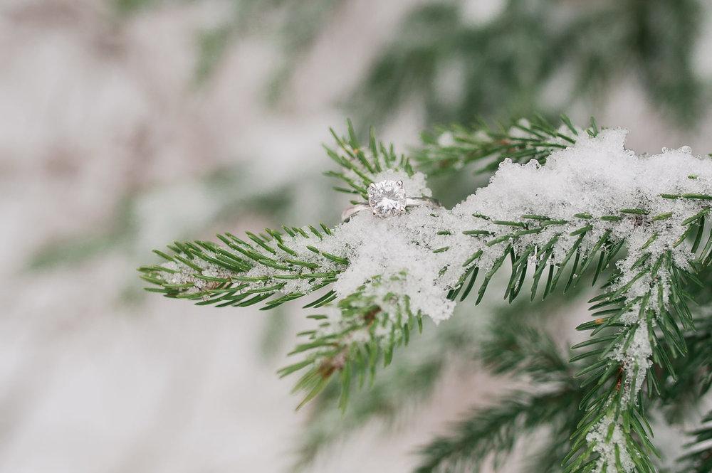 Winter Detail Ring Shot Photo