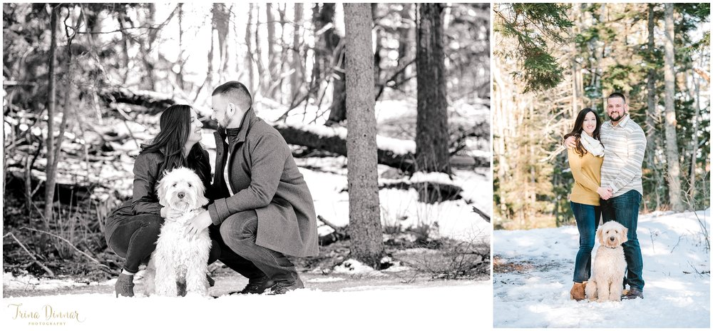 Southern Maine Couples Portraits with Goldendoodle puppy.