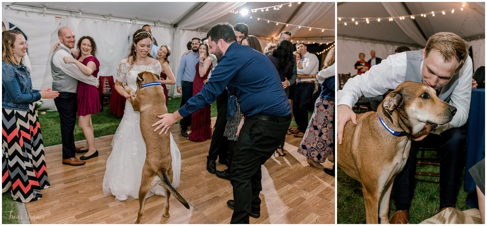 Bride dances with dog at wedding