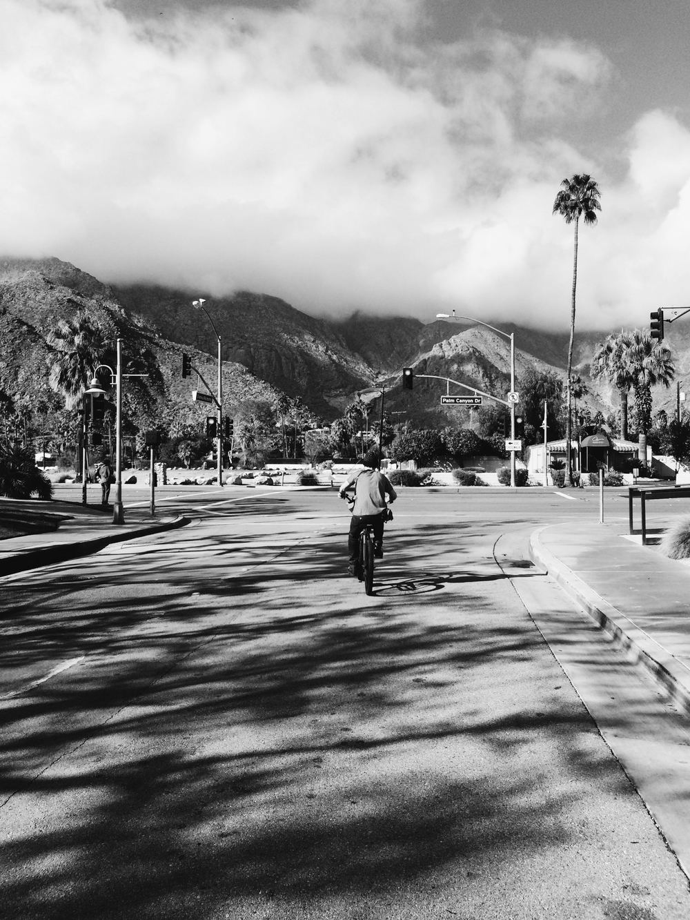 palm springs on a bike california.jpg