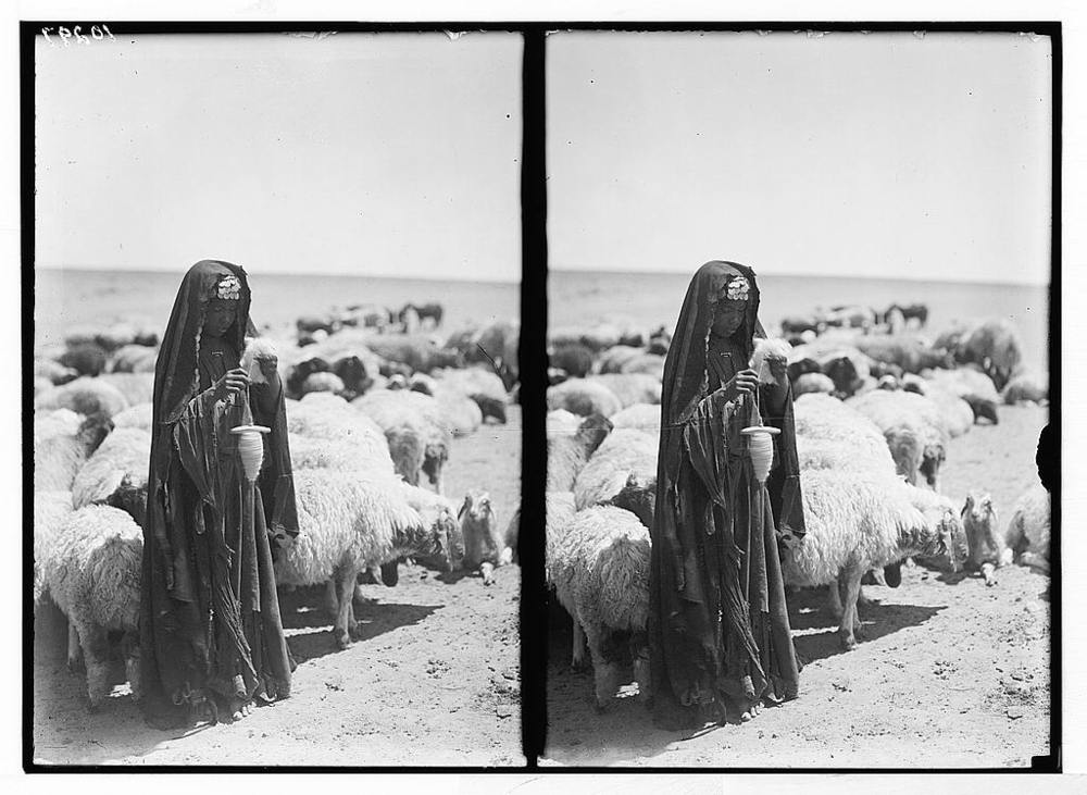 Bedouin Shepherdess, Library of Congress image from 1932, Palestine area, Matson Collection