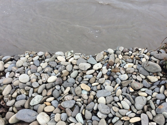 Elwha river shore