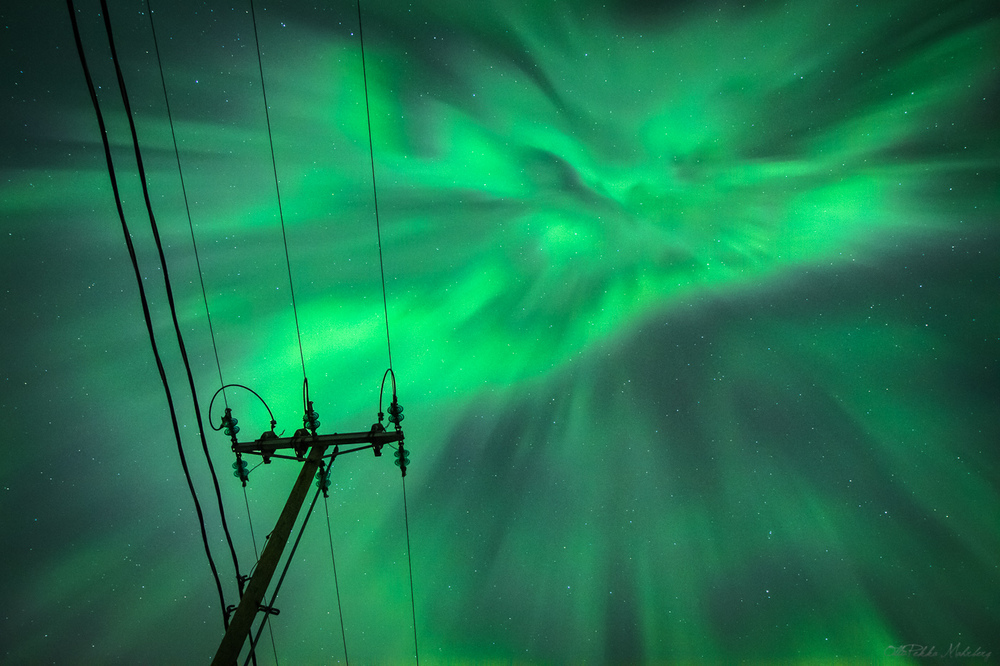 aurora_1400px-4457.jpg
