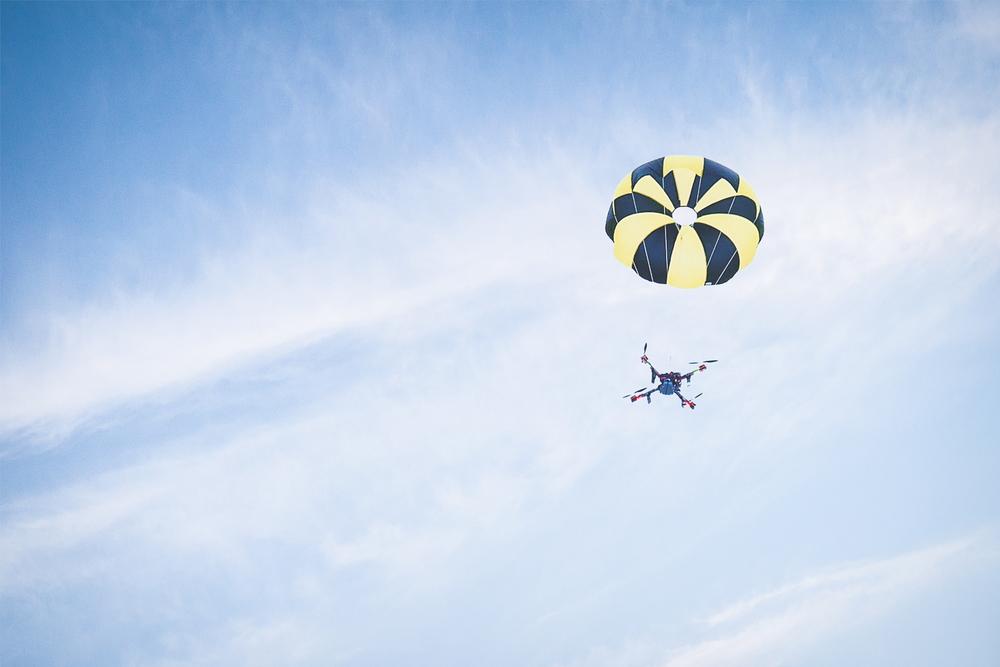Skycat_drop_1800px.jpg