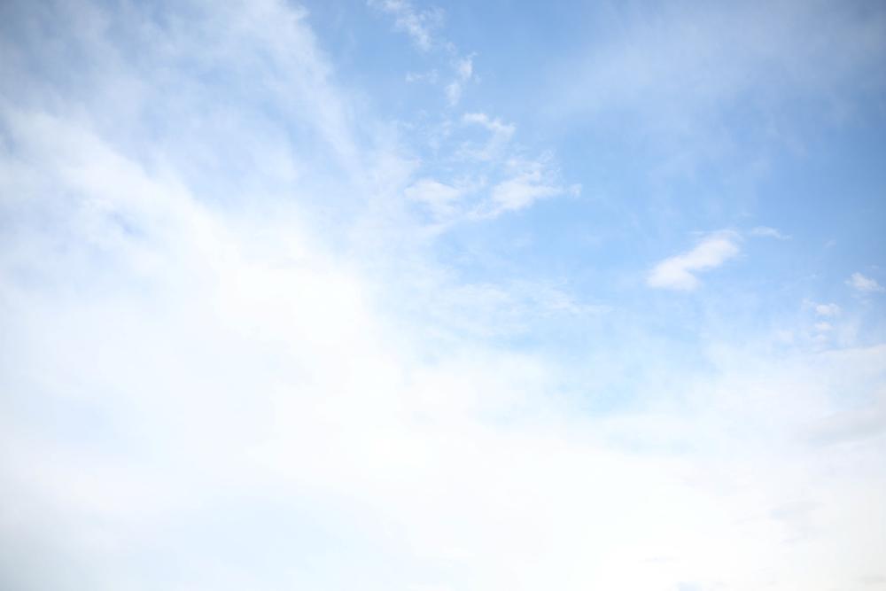camila + dave-8.jpg