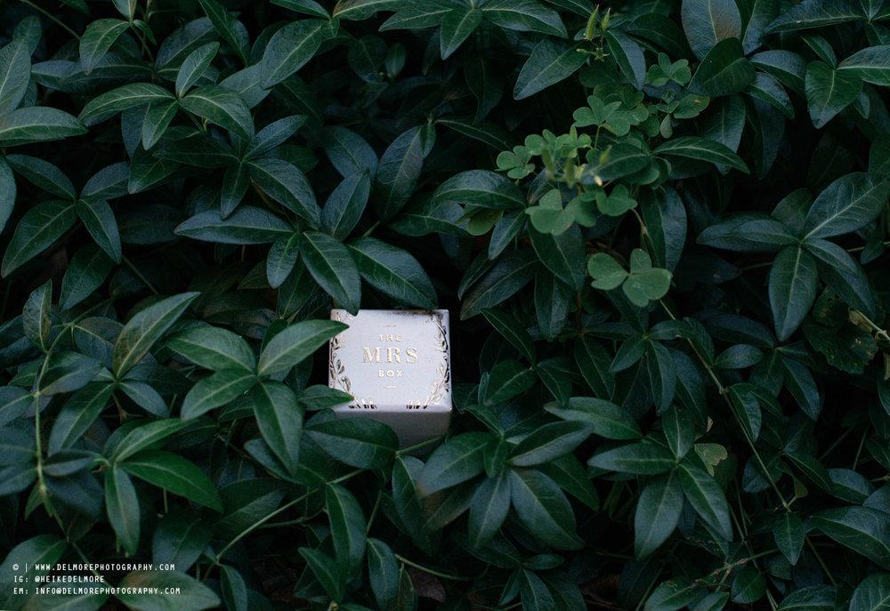 julia-blog_05.jpg