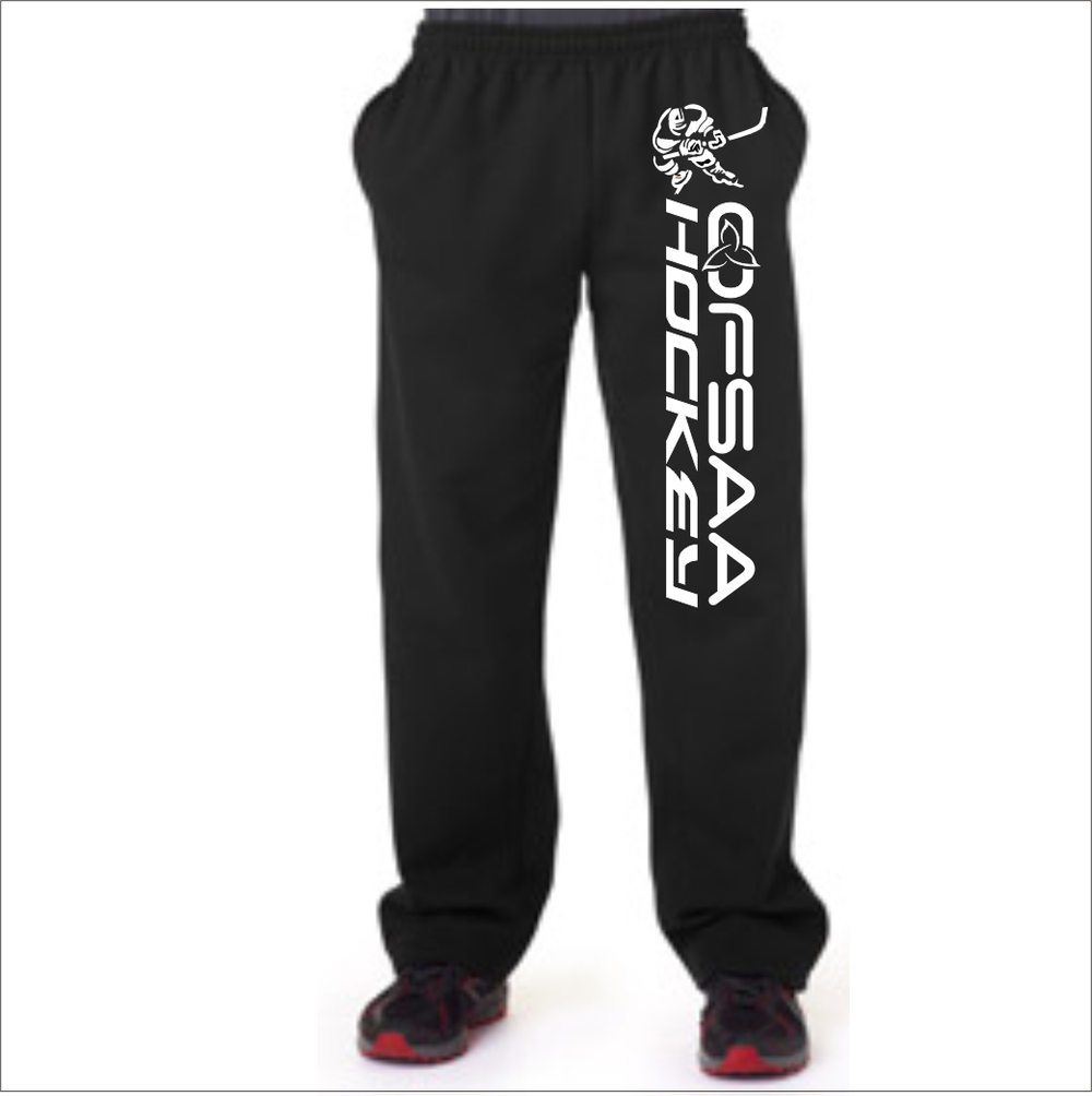 Boys Hockey pants single.jpg