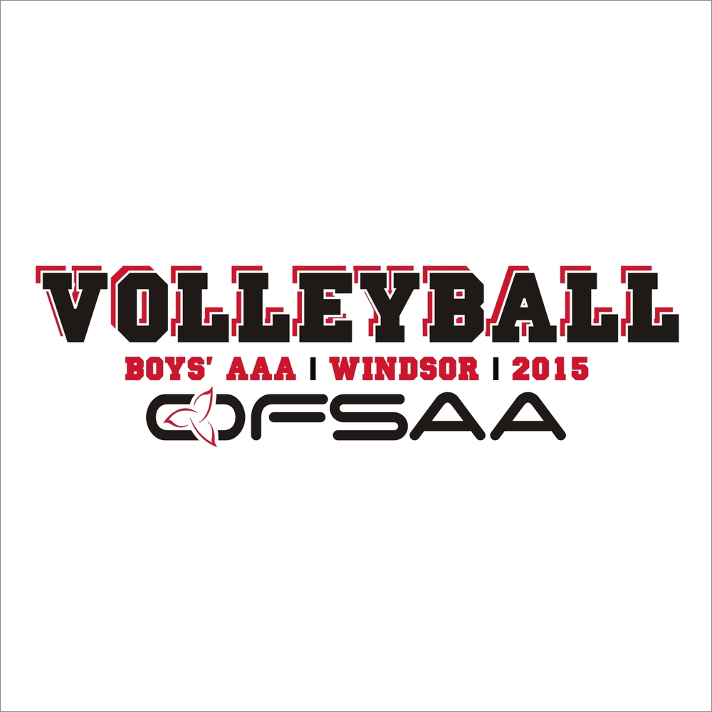 2015 Boys 3A Volleyball logo white.jpg
