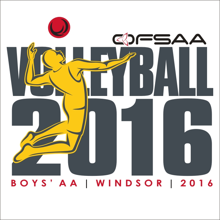 2016 Boys AA Volleyball logo white.jpg