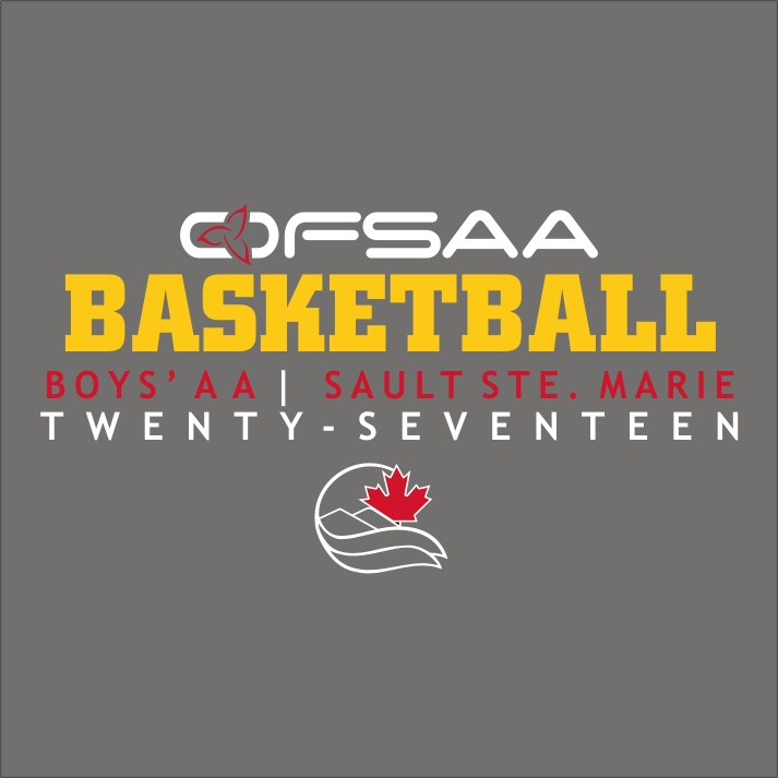 2017 Boys AA Basketball logo grey.jpg