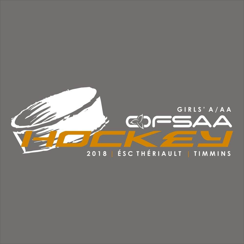 2018 Girls A AA Hockey logo grey.jpg