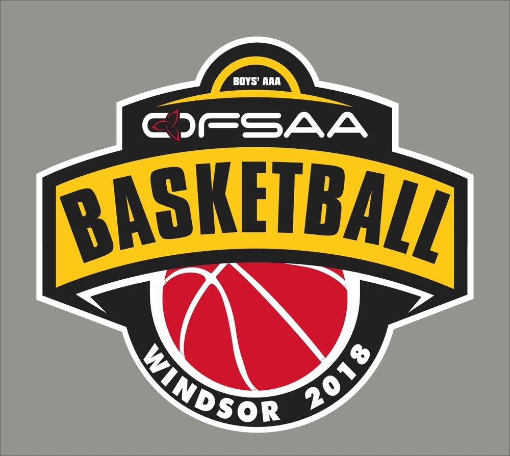 2018 Boys AAA Basketball logo grey.jpg