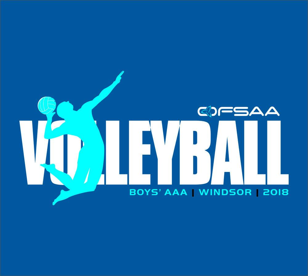 2018 Boys AAA Volleyball Logo blue.jpg