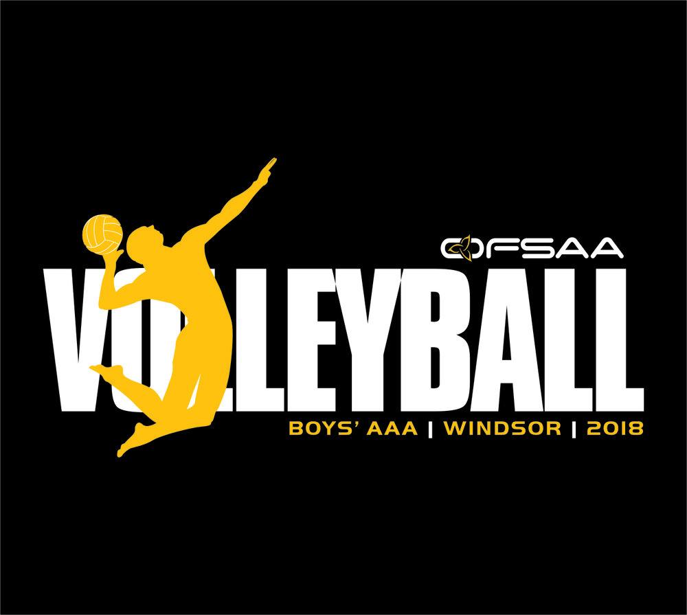 2018 Boys AAA Volleyball Logo black.jpg