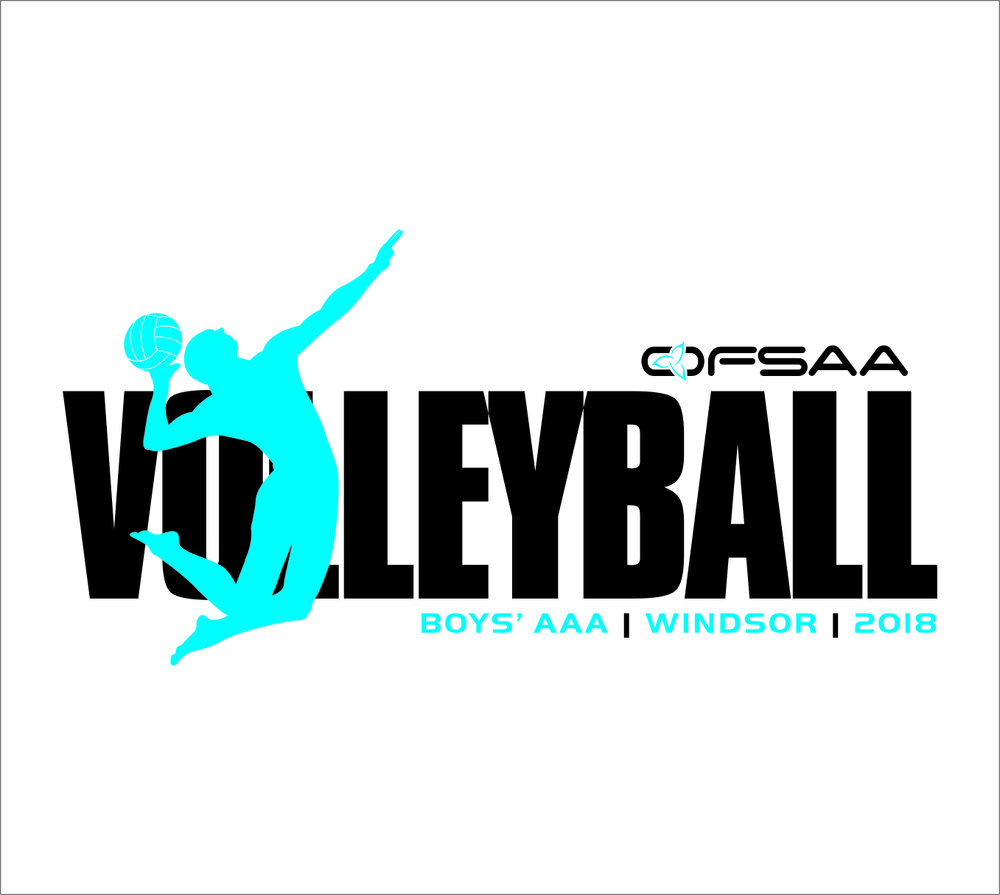 2018 Boys AAA Volleyball Logo white.jpg