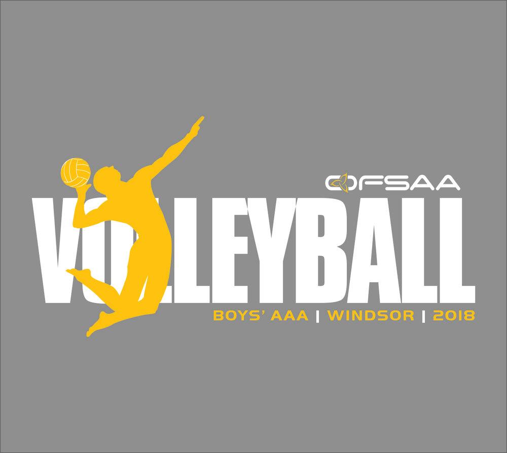 2018 Boys AAA Volleyball Logo grey.jpg