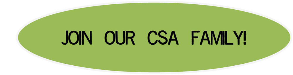 CSA button - website.jpg