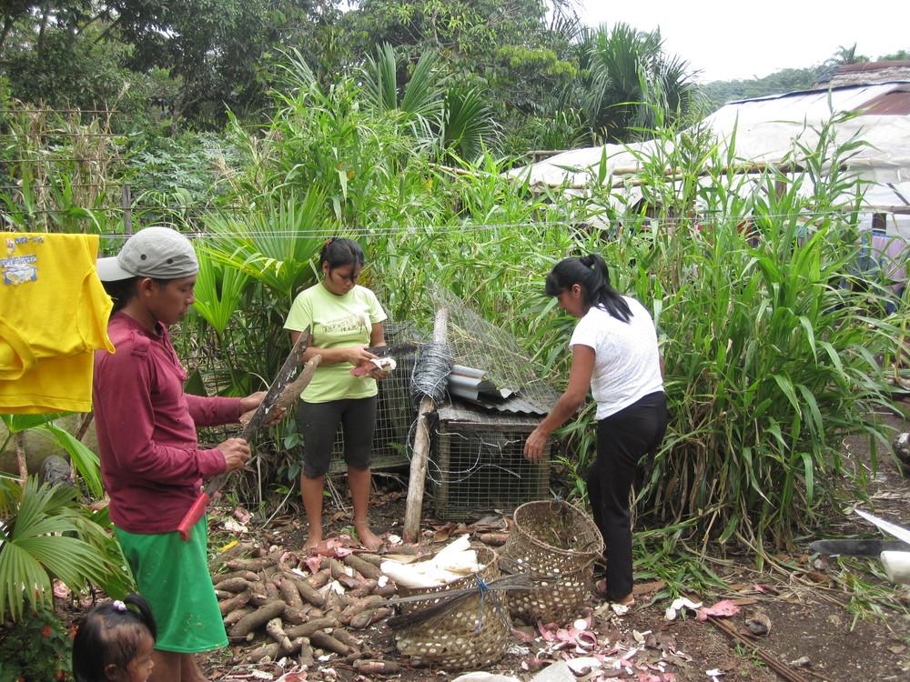 Indigenous Community - Ecuador
