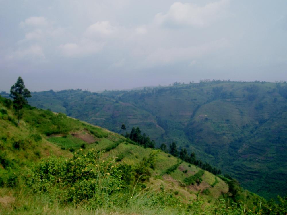 Uganda 162.jpg