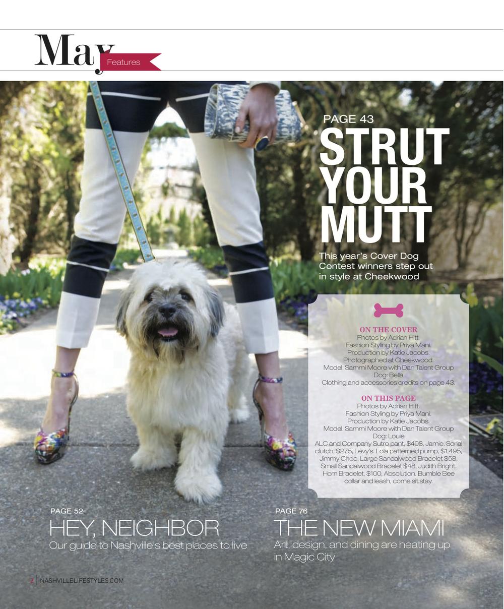 Dog Fashion2.jpg