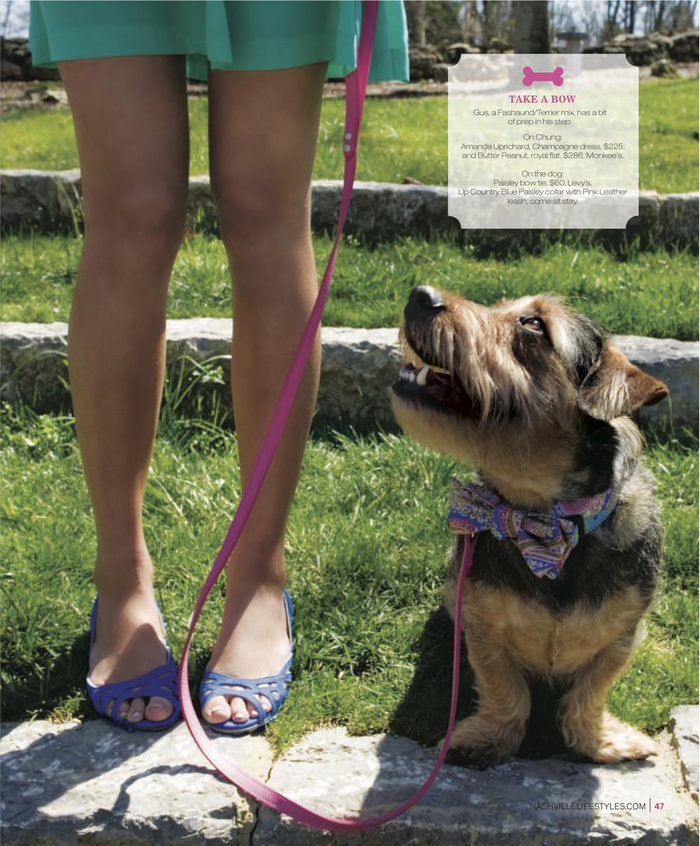Dog Fashion3.jpg