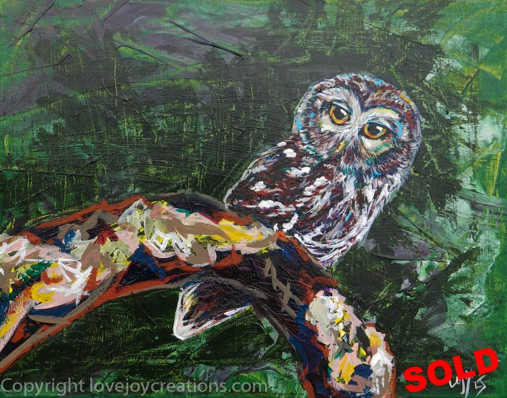 11x14 inches-Barn Owl