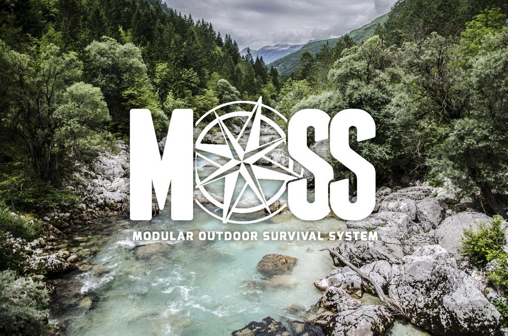 Moss3.jpg