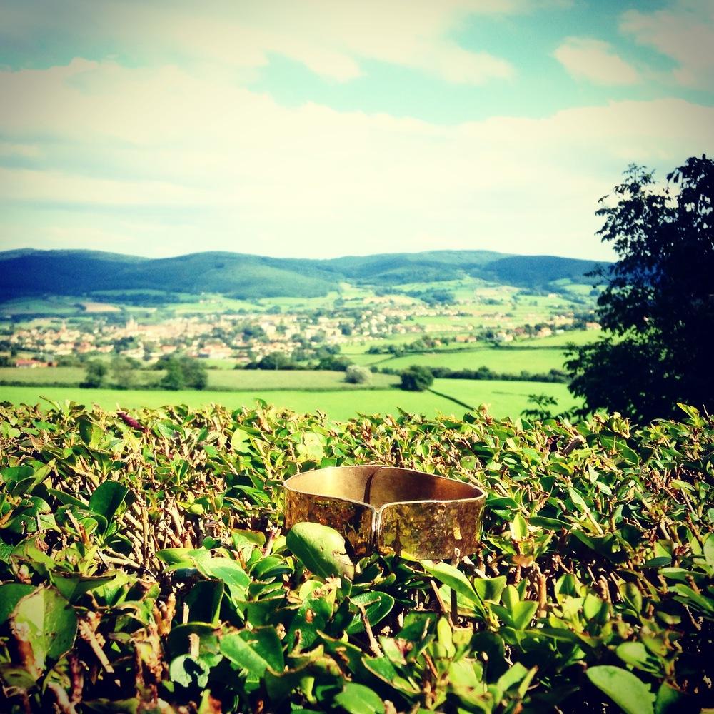 Bent-Not-Broken in Burgundy.JPG