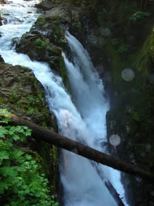 Beautiful Sol Duc Falls!