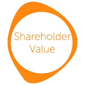FAVA-Shareholder.png