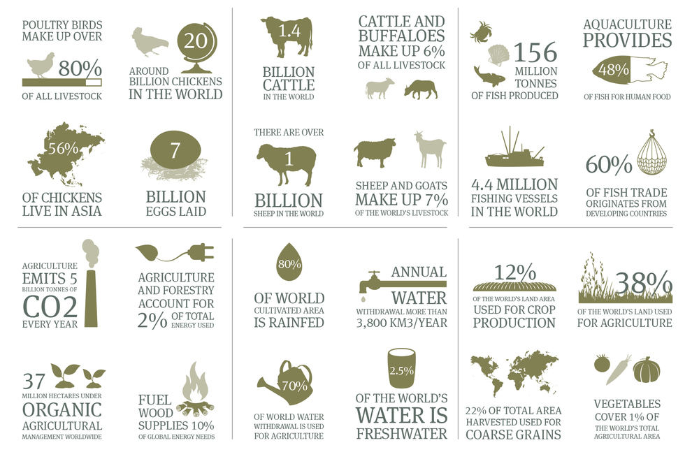 food--agribusiness-in-numbers_1-113013.jpg