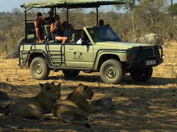 large_Mdonya-Wildlife.jpg