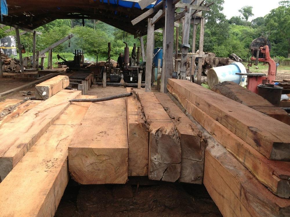 Mesquite procurement operations in Paraguay