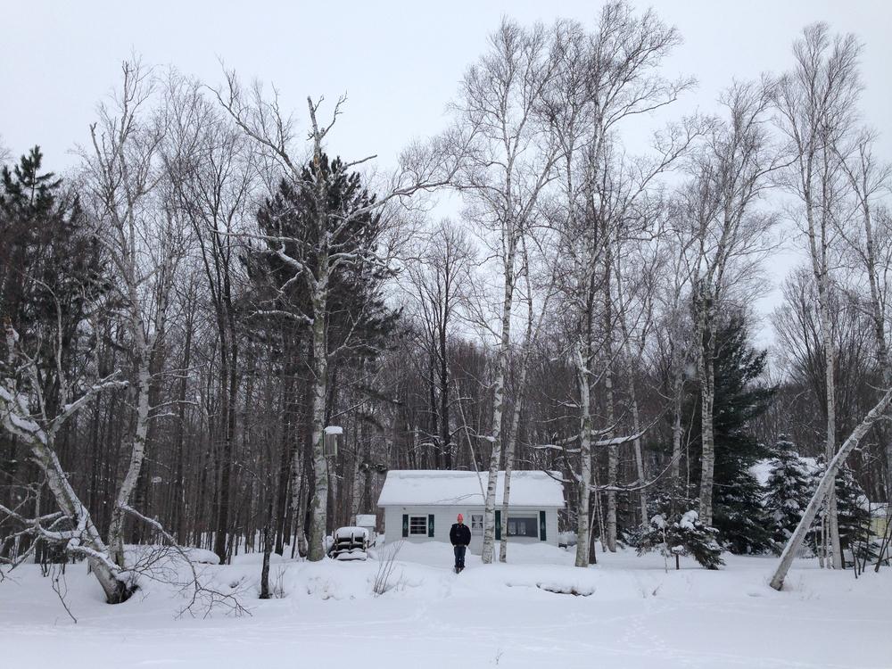 WinterbluesAK2.jpg
