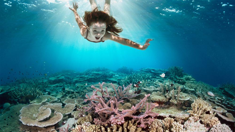 C_Underwater_42-22699184 copy.jpg