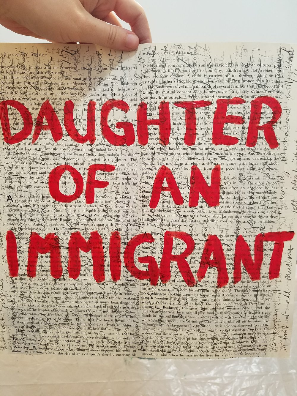 Daughter of an Immigrant  progress.