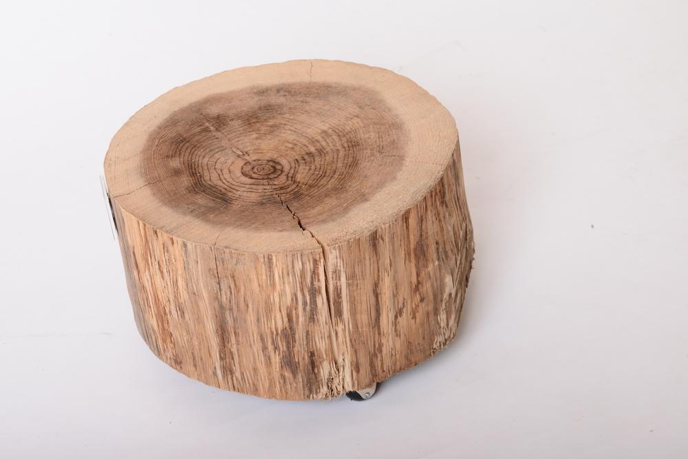 10%tree fir 已售出、已停產