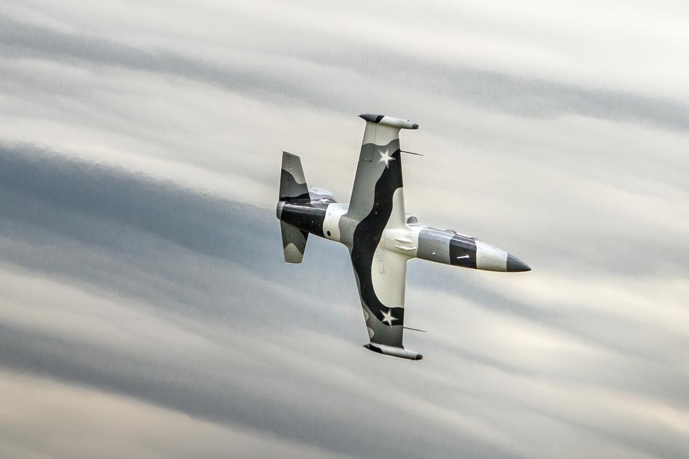 """A L-39 """"Albatross"""""""