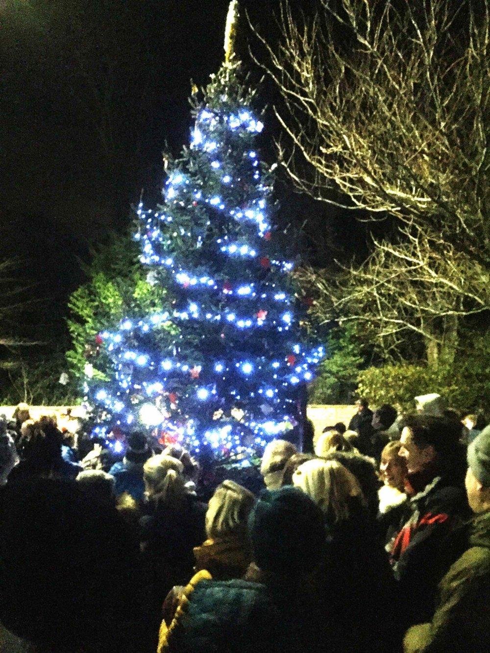 Rossett Christmas Tree